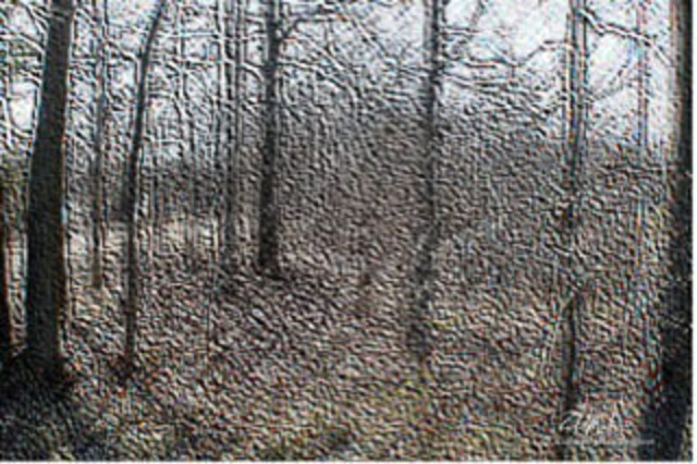 Richard Montemurro  'Woodland Scene', created in 2011, Original Computer Art.