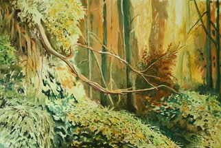 Artist: Rich Williams - Title: Gylangu Forest - Medium: Watercolor - Year: 2011