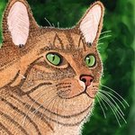 Tan Tabby Portrait By Ralph Patrick