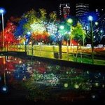 Night Lights 2 Series By Romy Galicia