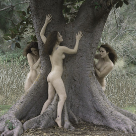 By Rowanmacs Rowanmacs: 'In The Woods There Grew A Tree', 2004 Color Photograph, Mythology.