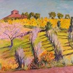 Hillside Vineyard By Roz Zinns