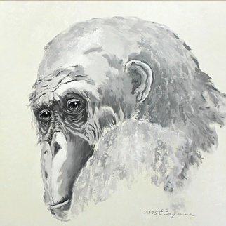 Elena Zorina Artwork Sight, 2015 Sight, Animals