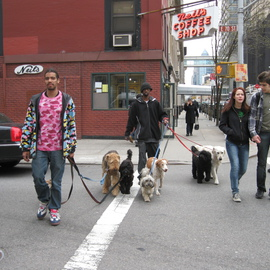 Dog Walkers On Upper Eastside, Ruth Zachary