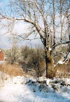 Ruth Zachary: 'Glorias View', 2012 Color Photograph, Seasons. Winter snow and sky scene, just across from my dear friend Gloria' s house in rural Limerick, Maine.  Larger size available ( 11 x 14, $98) . ...
