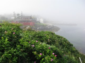 Ruth Zachary: 'Roses And Red House', 2012 Color Photograph, Landscape. Delicate ragusa roses in the foreground, iconic Red House and ocean all misty in the background. Monhegan Island, Maine. Larger sizes available ( 11 x 14, $98)...