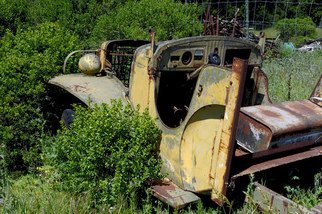 Ralph Andrea: 'Old Truck', 2005 Color Photograph, nature. California, USA.An old truck is gradually being reclaimed by nature.Digital Photograph - Light Jet Print on Fujifilm Crystal Archive Paper...