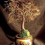 Asian Gold Leaves, Wire Tree Sculpture  By Sal Villano