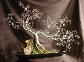Sal Villano: 'Cascade Number  3,  Wire Tree Sculpture ', 2007 Mixed Media Sculpture, Landscape.  Cascade # 3 - Wire Tree Sculpture Created using 20, 24, 26 gauge galvanized steel wire. 15