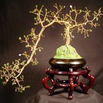 Jade Cascade Number 1, Wire Tree Sculpture By Sal Villano