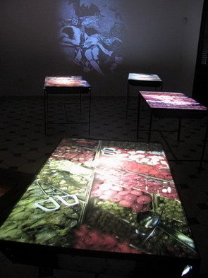 Sandra Ramos: 'The dream of reason', 2009 Indoor Installation, Undecided.
