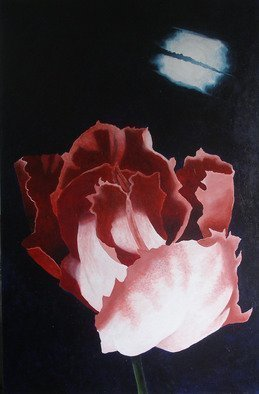 Sarah Longlands: 'Undecided Tulip by Full Moon', 2006 Acrylic Painting, Philosophy.   Which Way Now?                 ...
