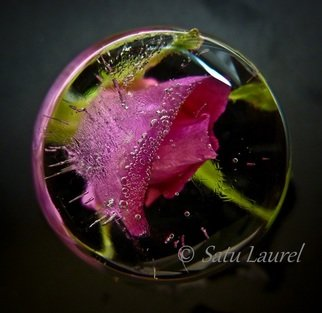 Artist: Satu Laurel - Title: Round1 - Medium: Color Photograph - Year: 2012