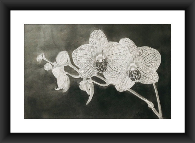 Shelton Barnes  'Orchid', created in 2020, Original Painting Acrylic.