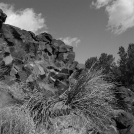 Susan Brannon: 'Santa Fe Petroglyphs', 2012 Black and White Photograph, Landscape. Artist Description:      Petroglyphs, Santa Fe, New Mexico, desert, Indian Art, bushes, photography, susan brannon, landscape, black and White, Black & white, sky, pueblo, home, desert, Native American, Indians, reservation, clouds, sunlight              ...