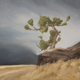 Scott Mackenzie: 'looking west', 2020 Oil Painting, Trees. Artist Description: Looking West features an ancient Limber Pine perched atop a rocky outcrop, weathered through the years but still standing tall overlooking the mountains. ...