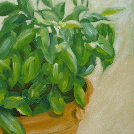 S. Josephine Weaver: 'Pot  of Basil', 2007 Oil Painting, Still Life.