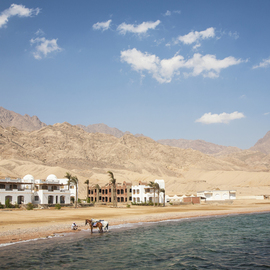 Frits Selier Artwork Gulf of Aqaba, 2012 Color Photograph, Beach