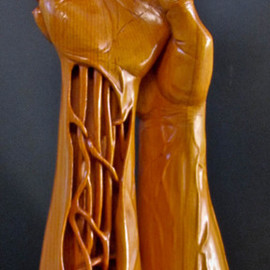 Michael Semsch: 'Wound', 1993 Wood Sculpture, Abstract Figurative. Artist Description:  Wound was inspired by a carving accident, during which I gauged the palm of my left hand. While studying the wound I envisioned my whole arm being sliced open. ...