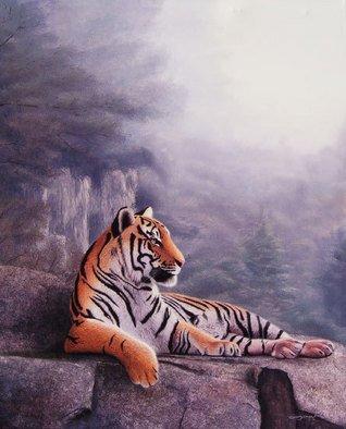 Sergio Gaspar Artwork 'El Acantilado del Tigre', 2006. Oil Painting. Animals. Artist Description: Realistic oil painting of a tiger resting on a cliff......