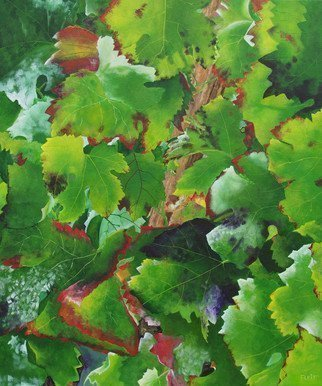 Steven Fleit: 'bordeaux vineyard 3', 2017 Acrylic Painting, Botanical. Bordeaux, France vineyard, fall, grape leaves, ...