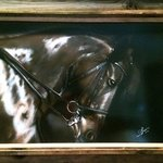 Horse By Stephen Fusco