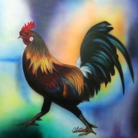 Rooster, Stephen Fusco