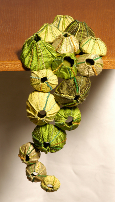 Sandra Golbert Artwork Barnacles, 2007 Fiber, Sea Life