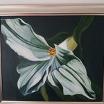 white flower By Sharon Dippenaar