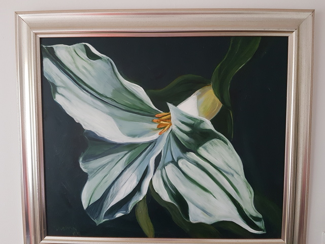 Sharon Dippenaar  'White Flower', created in 2018, Original Painting Oil.