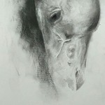 horse head By Bharti Yadav