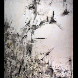 TAO OF NATURE  By Richard Lazzara
