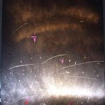 VISITOR By Richard Lazzara