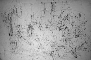 Artist: Richard Lazzara - Title: energy of the drawing room - Medium: Charcoal Drawing - Year: 1972