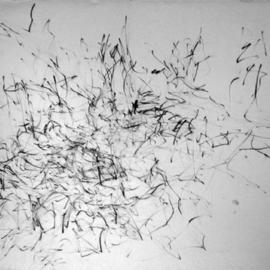 the order of chaos  By Richard Lazzara