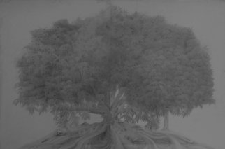 Muhammad Shehzad Majeed Artwork untitled, 2012 Pencil Drawing, Abstract Landscape