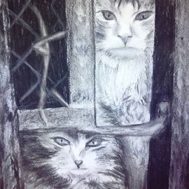 Siva Ranganathan: 'Raring to Go', 2013 Charcoal Drawing, Cats. Artist Description:  Raring to go - attitude depicted in the sketch. The sketch inspires people to keep going and fight till the end, come what may the obstacles.