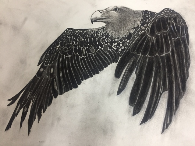 Shubham Choudhary  'Vulture', created in 2018, Original Drawing Charcoal.