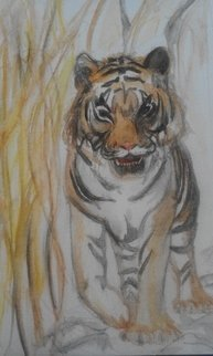 Sofia-maria Klein: 'the tiger saw me', 2018 Other Painting, . Artist Description: Aquarelle Pencil on paper...