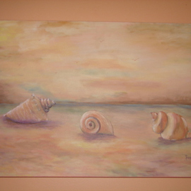 Sophia Stucki: 'Seashells on the Beach', 2007 Acrylic Painting, Seascape. Artist Description:  Three large seashells on the beach , gallery canvas no need to frame . wire attached ready to hang. ...