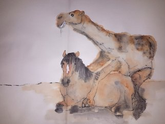 Debbi Chan Artwork a camel story album, 2015 Artistic Book, Animals