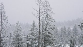 Debbi Chan: 'a white day', 2010 Color Photograph, Landscape. Artist Description:   photos from Idaho.  ...