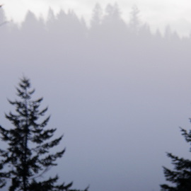 Debbi Chan Artwork and more fog, 2012 Color Photograph, Landscape
