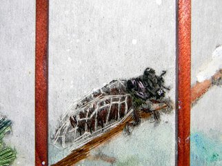 Artist: Debbi Chan - Title: another cicada - Medium: Color Photograph - Year: 2011