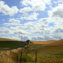 Debbi Chan: 'another little road in Idaho', 2010 Color Photograph, Landscape. Artist Description:        photos from Idaho.       ...