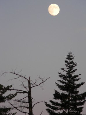 Artist: Debbi Chan - Title: atumn moon - Medium: Color Photograph - Year: 2010