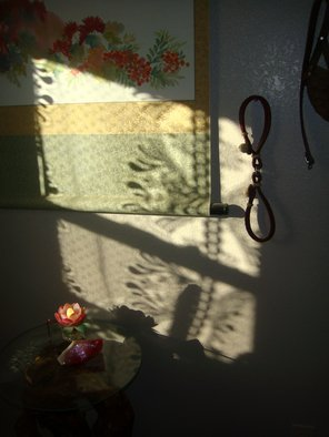 Color Photograph by Debbi Chan titled: bathroom lace, 2010