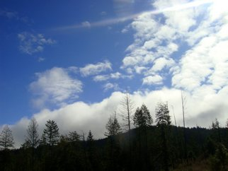 Color Photograph by Debbi Chan titled: big white cloud, 2010