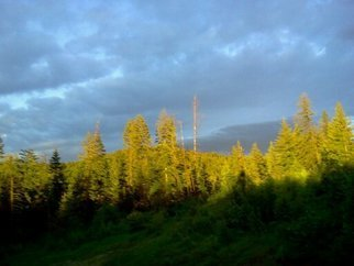 Debbi Chan: 'blue against the sunlit trees', 2011 Color Photograph, Beauty. Artist Description:     photos from idaho.                                                                                                                                                                                                                               ...