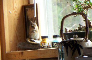 Color Photograph by Debbi Chan titled: chipmunk in my studio, 2010
